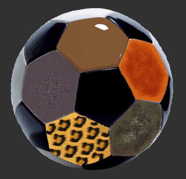 Mes images - Trucages Perso d'mages, (131), Madame galet fait bronzette, Un ballon au poil - le kiwi sourie,