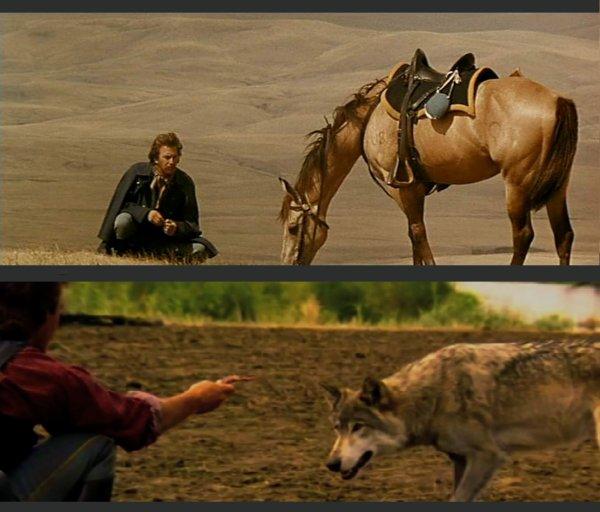 (150) Cinéma - Danse avec les loups
