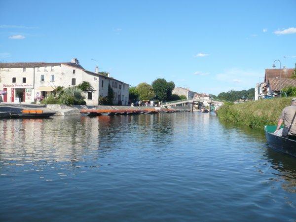 (162) Mes Ballades - Tour de barque au marais Poitevin