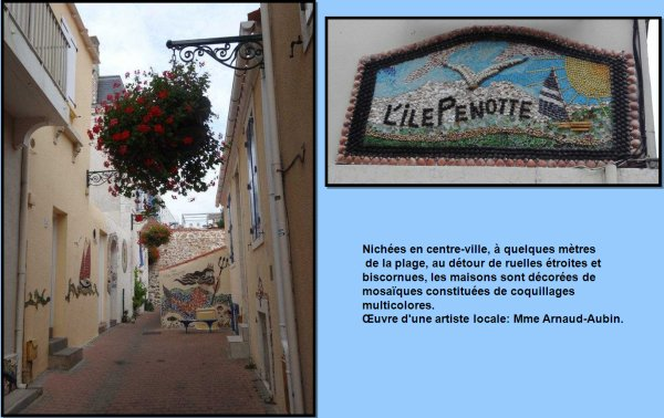 (191) - 123Tablature-O-Blog - L'ile Penotte - Miss coquillage