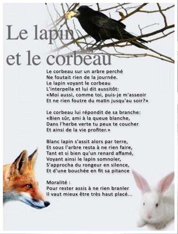 Le lapin et le corbeau (240)