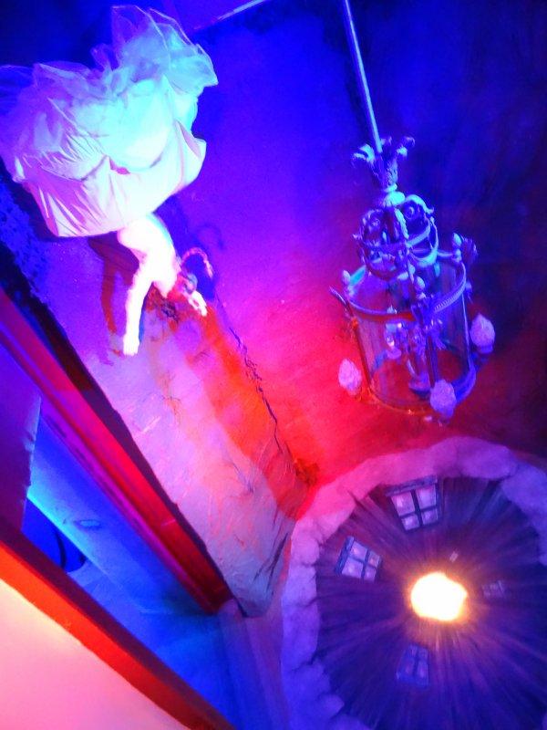 EXPOSITION   De l'autre côté du miroir (Bordeaux)