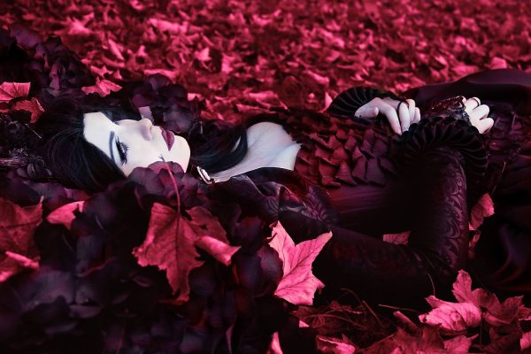 I trample the leaves of the past until time come back to life