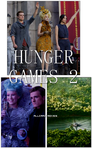 HUNGER GAMES 2 - SAGA