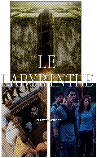 LE LABYRINTHE 1 - SAGA