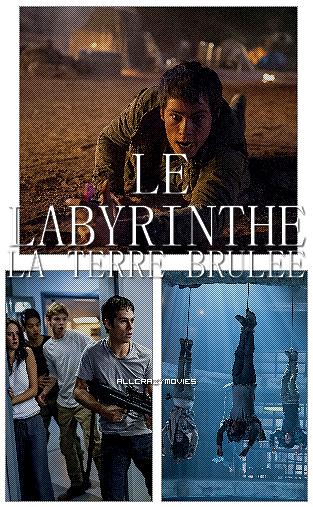 LE LABYRINTHE 2 - SAGA