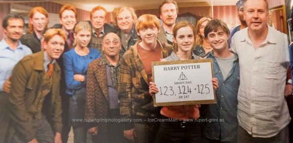 Harry Potter: Page to Screen (4)