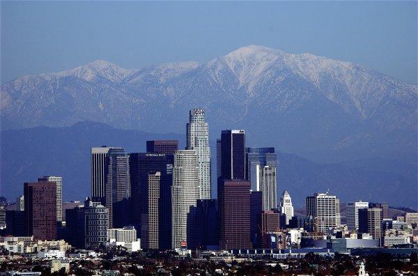 Dan on Los Angeles