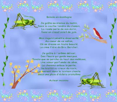 Petite Fleur Des Montagnes La Poésie Pour Oublier Lennuie