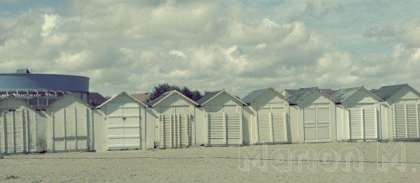 Sur la plage abandonnée..