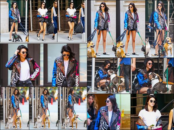 12.09.2016 ─ Kendall Jenner a été photographiée, alors, qu'elle était sur un set de photoshoot dans New-York C.La jeune mannequin était accompagnée de trois chiens... Concernant sa tenue, c'est un top de ma part ! J'ai hâte de voir le shoot de la belle brune !