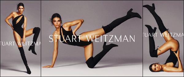 '-● CAMPAGNE- Kendall Jenner a posée pour « Stuart Weitzman's » collection d'Automne '19 !