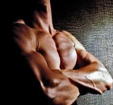 Mon Programme 6 Entrainements/semaine Definition Musculaire