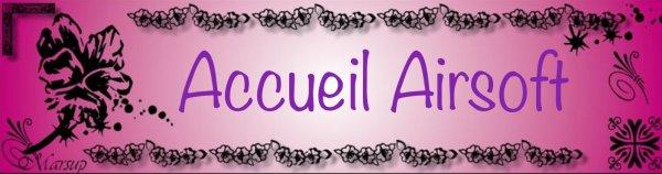 Accueil Airsoft