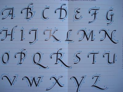 Les Alphabets 7 Les Capitales Italiques à Fioritures Le Monde