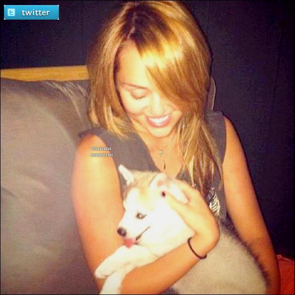 . 15.07.11 - Miley, avec son nouveau chien prénomméFloyd était à l'aéroport de LAX. .