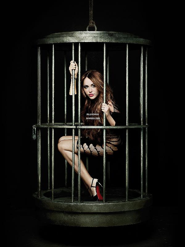 """. Photoshoot : Découvre ou Re-Découvre le photoshoot de Miley pour son album """"Can't Be Tamed"""". T'aimes ? ."""