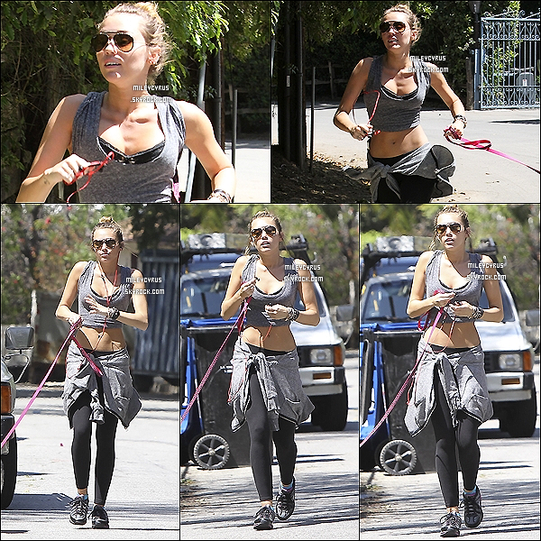 . 04/04/12 - Miley se promenant avec son chien Floyd dans Los Angeles. .