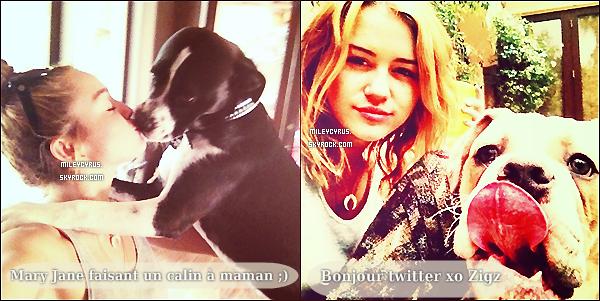 . 13/07/12 - Miley sortant de son cours de pilates avec Liam à West Hollywood. Miley apparait dans le nouveau clip du groupe de son frère Trace Cyrus. Vidéo (A partir de 1min51) .