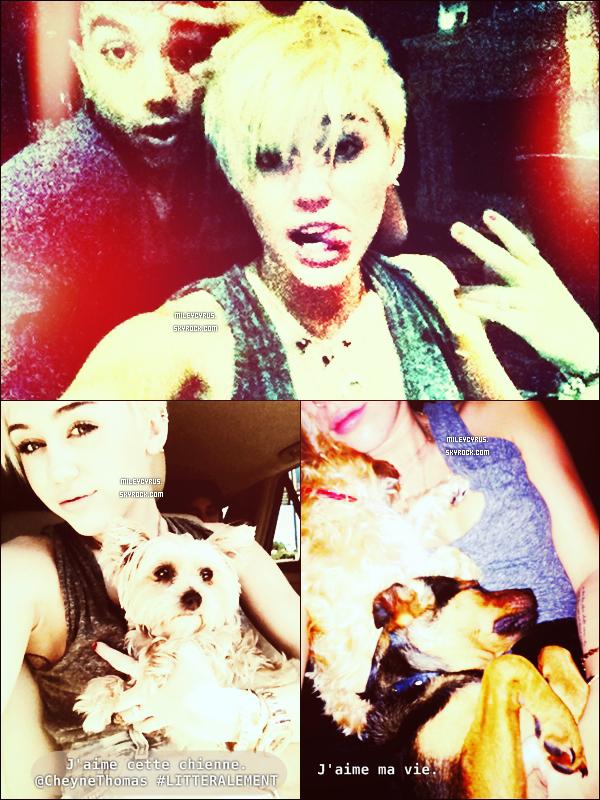 . 25/08/12 - Miley à été vu faisant du shopping à Philadelphie encore. Le nouveau photographe de Mil estSean Michael Triana. Ilvient d'être engagé pour réaliser «les nouveaux projets secrets» de Miley dont les photos pourson nouvel album qui sortira en 2013! Il réalisera aussi un photoshoot pour son nouveau site officiel, qui sera dévoilés en Octobre. Alorspressé? .