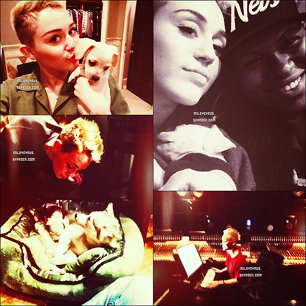.  05/01/2013 - Miley allant chercher de la nourriture chez Sharkys Woodfired Mexican Grill à L.A J'adore sa tenue, pour moi elle est magnifique ! (l) .