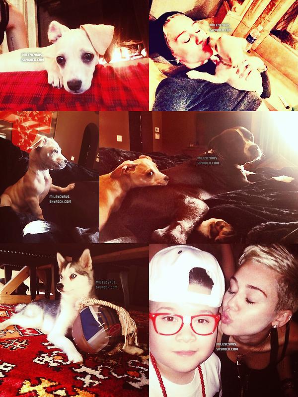 . 02/02/13 : Miley a rendu visite àLil Kim & Tiffany Foxx. J'adore sa tenue, le pantalon est top ainsi que le haut ! Miley a l'air toute contente ! .