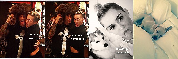 . |05 Novembre 2013 | Candids | Miley  était au studio de tatouage High Voltage pour se faire son 21ème tatouage par Kat Von D.  Elle s'est fait tatouer le portrait de sa mamie sur son avant-bras droit. Qu'en pensez-vous?    .