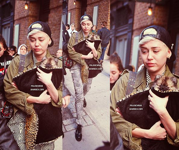 . |04 avril 2014 | CANDIDS | Miley était à New York avec sa mère, elle a visité plusieurs chenils avant de trouver Moonie, son nouveau chien..