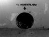 In--Wonderland