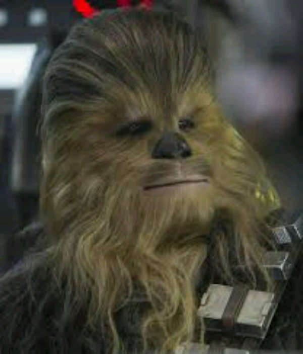 Chewbacca et yan solo. Les meilleur.