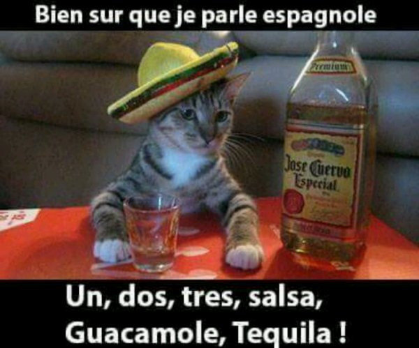 Si si hablo espagnol!!! Mdr