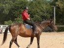 Photo de cheval-love-love0