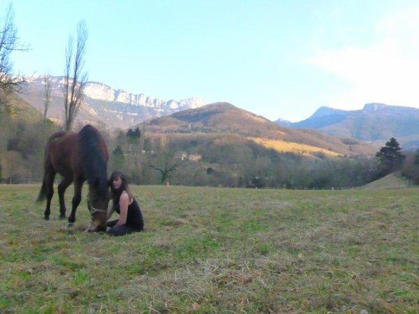 Le cheval est un être libre, il ne vous appartient pas.  ♡