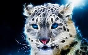 Un joli Puma toute en Beauté