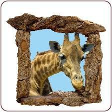 Une girafe à sa fenêtre