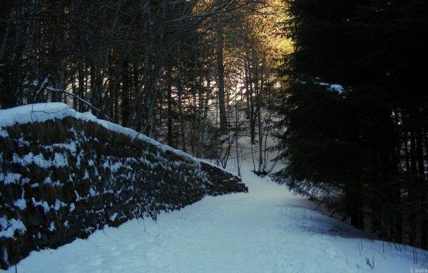 .:. La neige <3 .:.