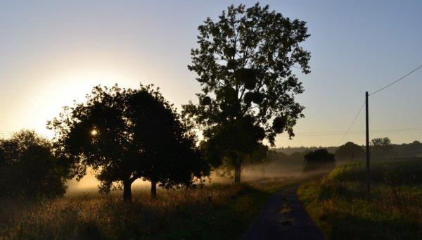 .:. Lumière du matin .:.
