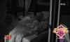 Cindy et Giuseppe surpris dans le même lit Benoît et Thomas débarquent dans la chambre de Giuseppe et Cindy et les surprennent dans le même lit. Aussitôt mis au courant, FX réagit mal. Il se sent trahi.