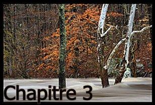 Chapitre 3-Hésitation