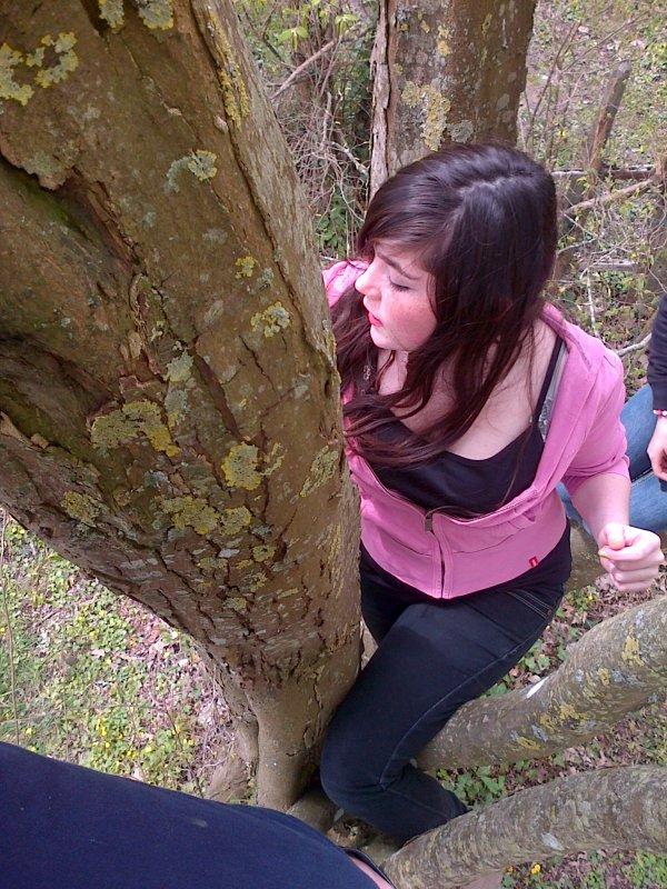 comment on c'est éclater dans cette arbre c'etai tro bien