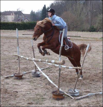 Lance ton coeur par dessus L'obstacle et le cheval suivra ...