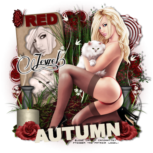 Tuto 740 - Autumn Red
