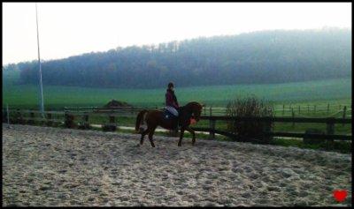 """"""" L'équitation est le seul et unique sport individuel qui se pratique à deux et qui donne un gout de liberté. """""""
