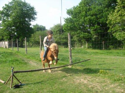 balance ton coeur par dessu l'obstacle ... ton cheval suivra ♥