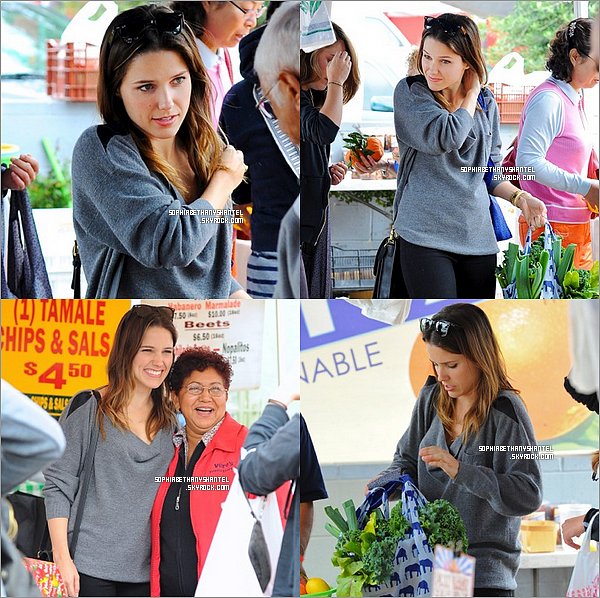 ----------------------------------------------------------------------------------------------------------------------22.05.2011 / Sophia Bush Shopping in Hollywood ----------------------------------------------------------------------------------------------------------------------