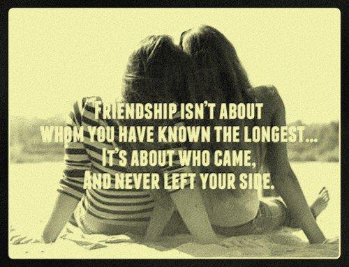 Chapitre 4 : L'amitié c'est sacré !