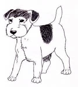 Les chiens voient-ils en noir et blanc?