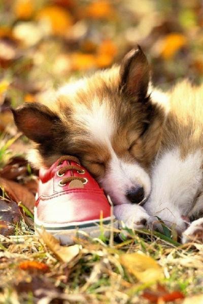 petite sieste... j'adore!!!