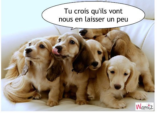 les gourmands!!!!!!!