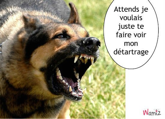 oula attention...